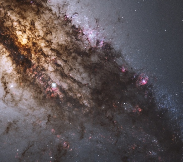 Stars and Gas in the Milky Way Galaxy
