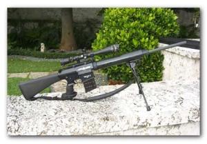 SR 25 Stoner Sniper Rifle